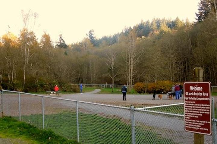 Pet Friendly Lake Padden Dog Park