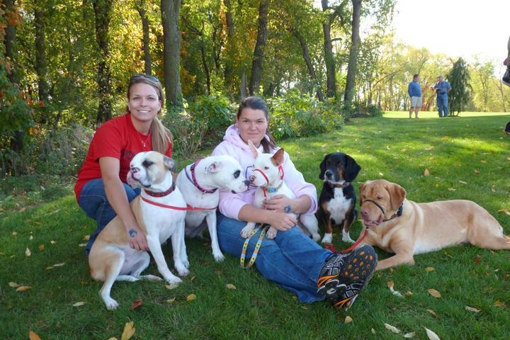 Pet Friendly Veterans Park Dog Park