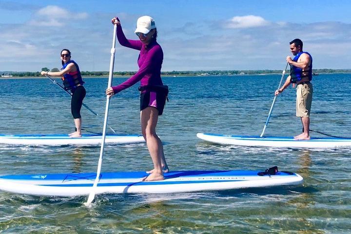 Pet Friendly Hamptons Board, Beach, Boat Adventure