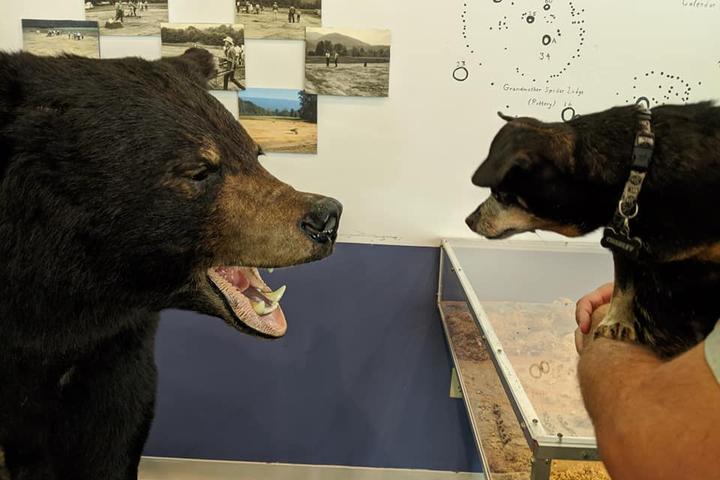 Pet Friendly Wolf Creek Indian Village & Museum