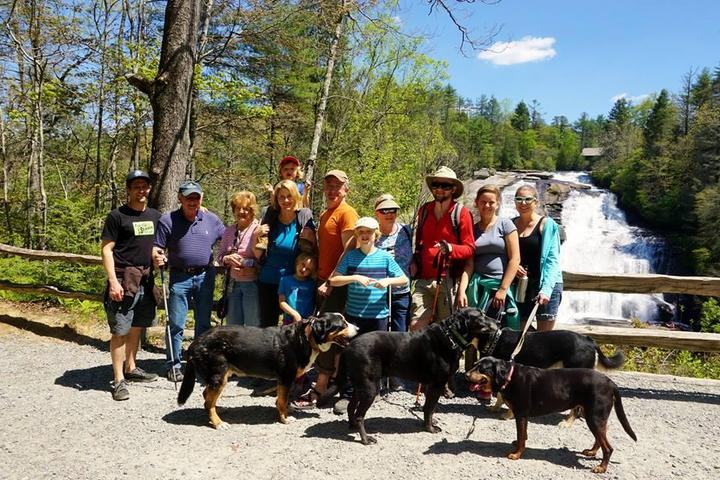 Pet Friendly Triple Falls and High Falls Trails