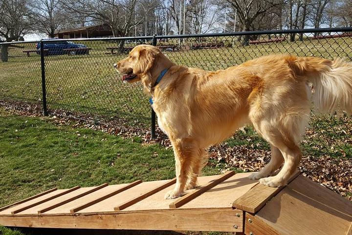 Pet Friendly Gypsy Hill Dog Park