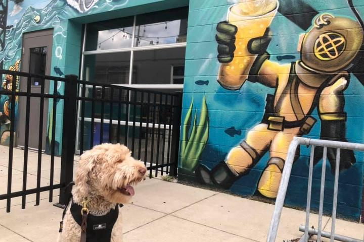 Pet Friendly River Rouge Brewing Company