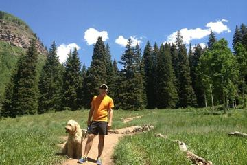 Pet Friendly Booth Falls and Lake Trail