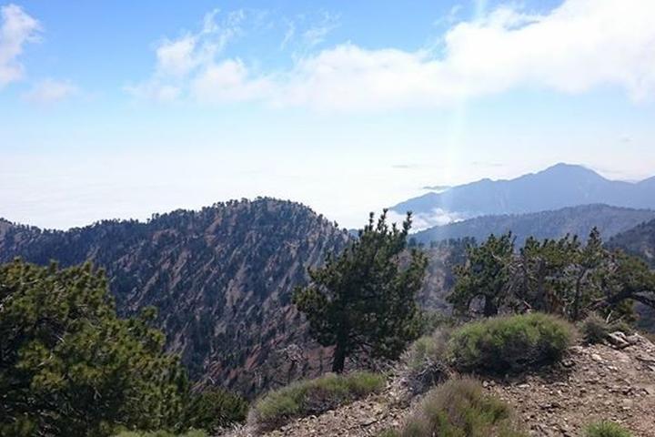 Pet Friendly Mount Baden-Powell Trail