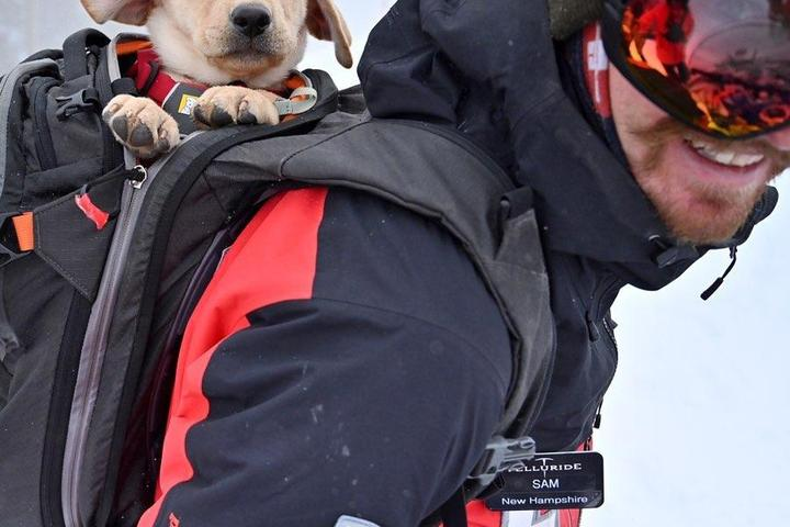 Pet Friendly Telluride Ski Resort Nordic Skiing