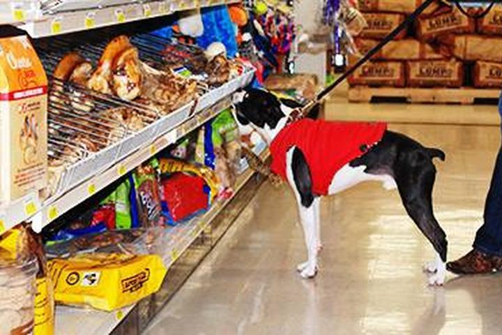 Dog Friendly Olathe, KS - Bring Fido