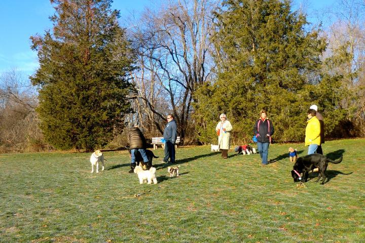 Pet Friendly Winslow Dog Park
