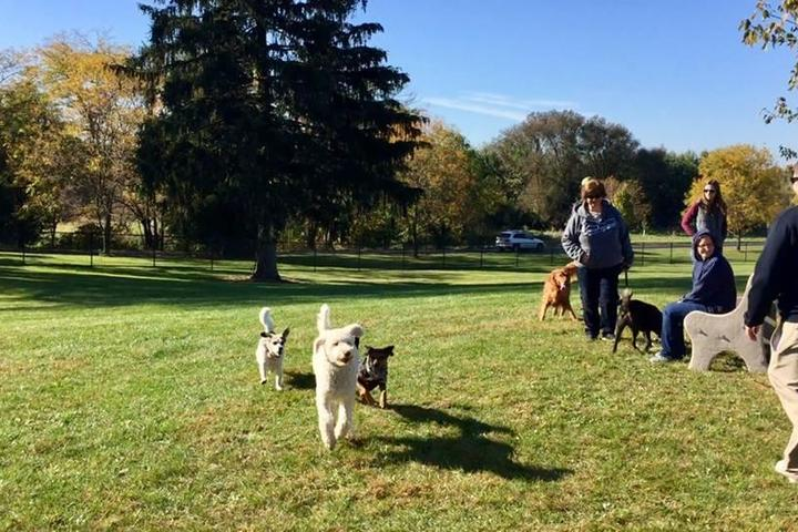 Pet Friendly Lower Macungie Dog Park