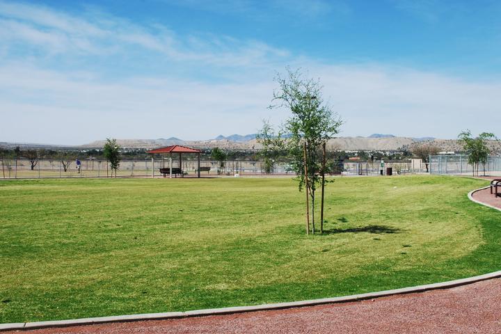 Pet Friendly Quail Creek-Veterans Municipal Park