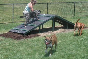 Pet Friendly Roonie's Canine Corner at Robert Lambert Park