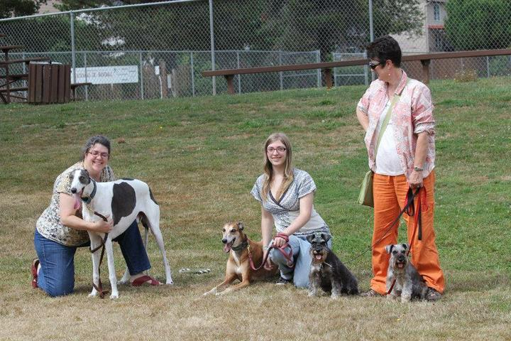 Pet Friendly Happy Valley Dog Park