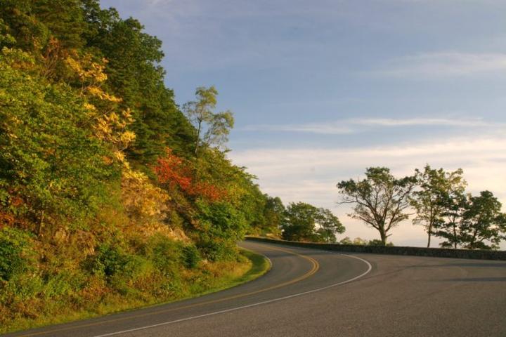 Pet Friendly Shenandoah National Park Skyline Drive