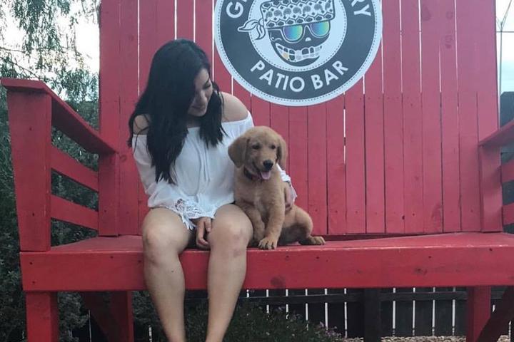 Pet Friendly Gringo Theory Patio Bar