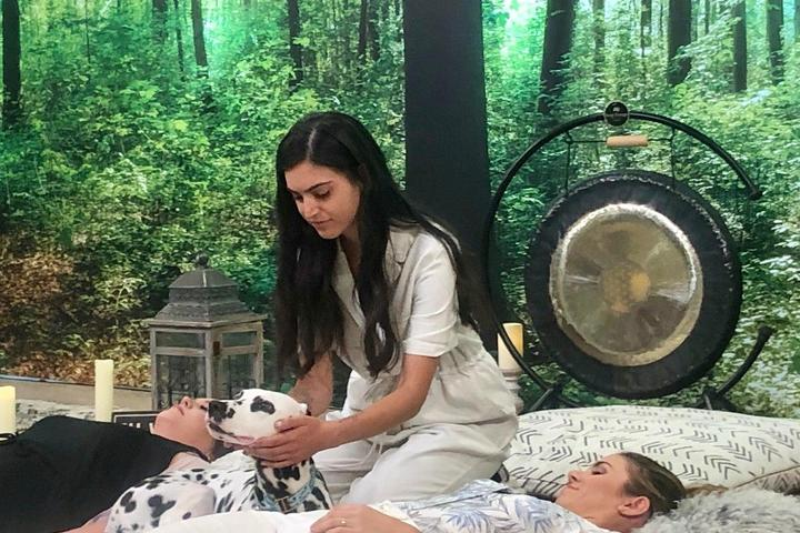Pet Friendly Experience Healing Reiki with Your Dog