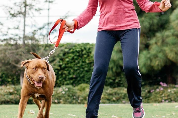 Pet Friendly Fitness Class With Your Dog