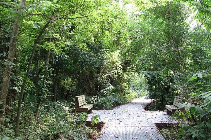 Pet Friendly Big Oak Tree State Park