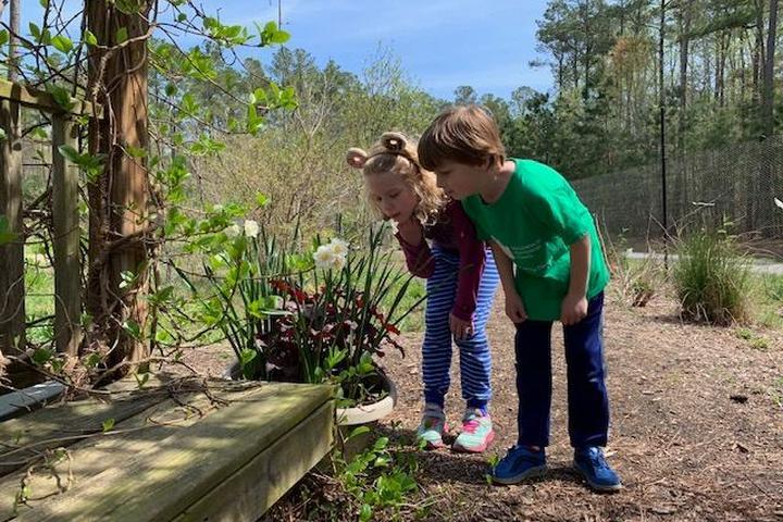 Pet Friendly Williamsburg Botanical Garden