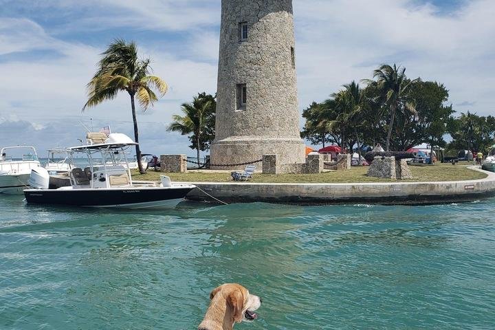 Pet Friendly Boating Adventure on Biscayne Bay