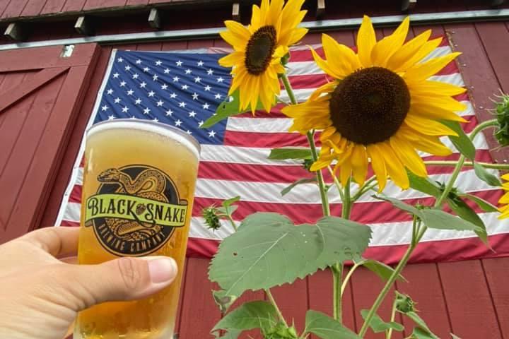 Pet Friendly Black Snake Brewing Company