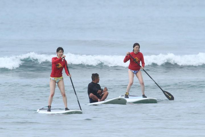 Pet Friendly Ohana Surf Project