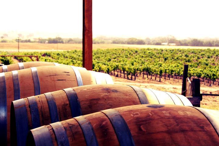 Pet Friendly Kalyra Wineries