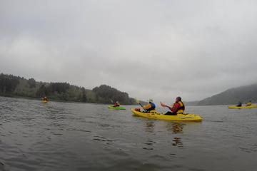 Pet Friendly Dog friendly kayak tours