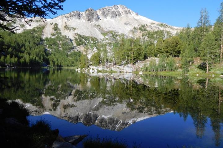 Pet Friendly Cooney Lake / Martin Lakes
