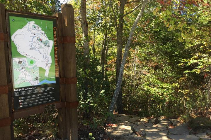 Pet Friendly Carolina Mountain Trail