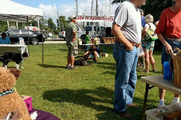 Pet Friendly Apalachicola Dog Park
