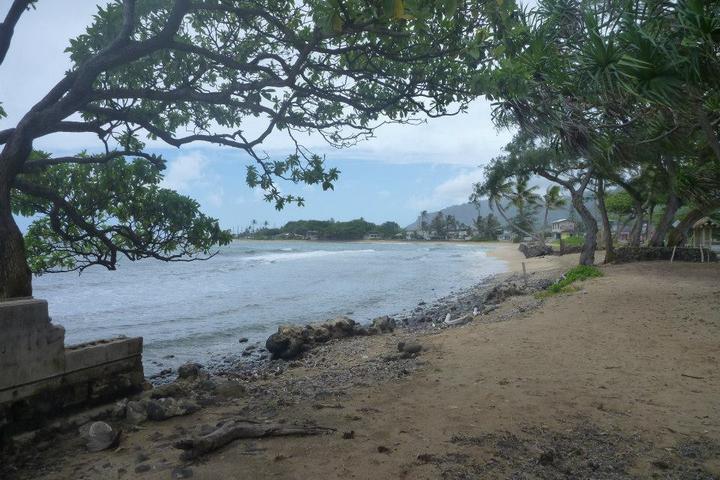 Pet Friendly Aukai Beach