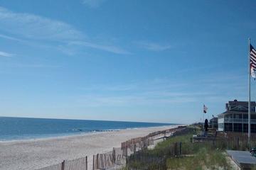 Pet Friendly Bay Head Beach