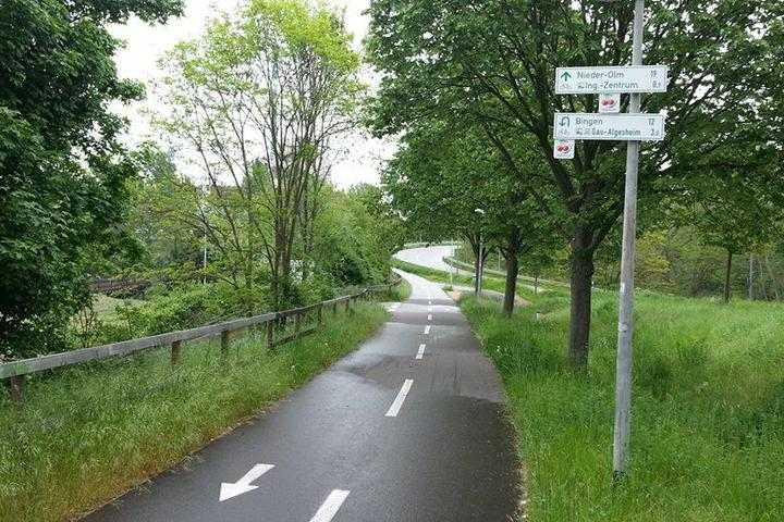 Pet Friendly Olympic Discovery Trail