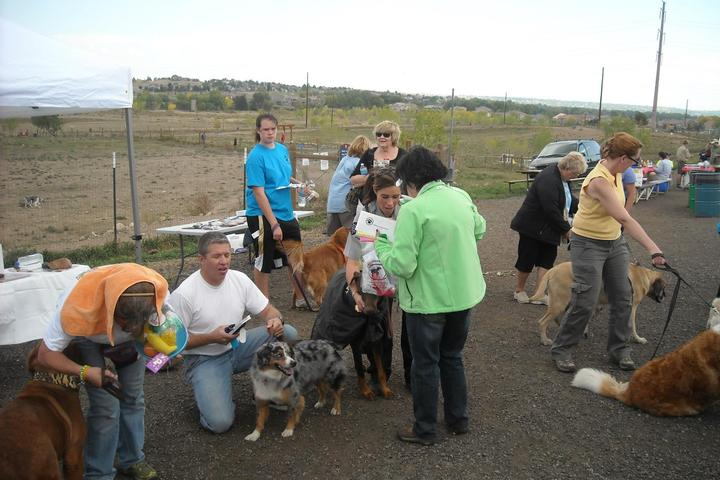 Pet Friendly West Arvada Dog Park