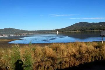 Pet Friendly Big Bear Lake Beaches