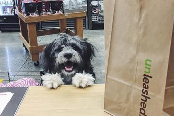 Pet Friendly Unleashed By Petco