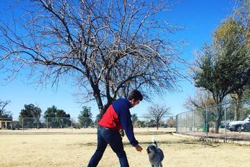 Pet Friendly PETsMART Dog Park at Washington Park
