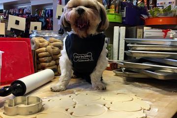 Pet Friendly Three Dog Bakery