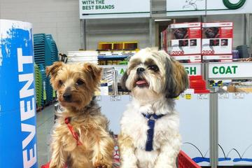 Pet Friendly Lowe's Home Improvement