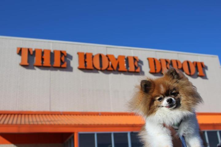 Pet Friendly Home Depot