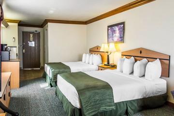 Pet Friendly Quality Inn & Suites Denver Airport - Gateway Park