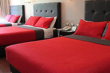Pet Friendly Hotel Diana Del Bosque