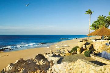 Pet Friendly One and Only Palmilla Los Cabos