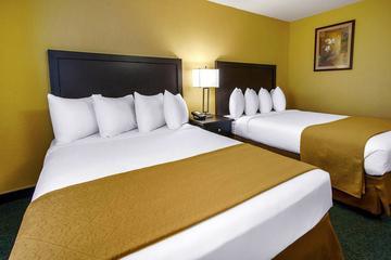 Pet Friendly Quality Inn & Suites Springfield