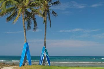 Pet Friendly The St Regis Punta Mita Resort