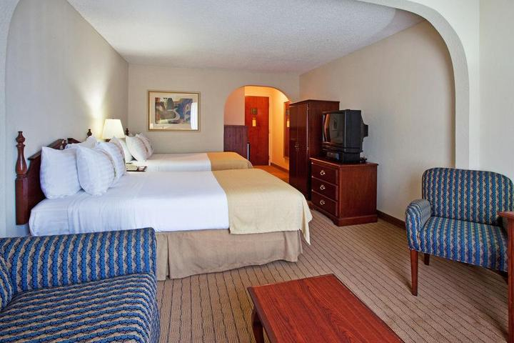 Pet Friendly Holiday Inn Hotel & Suites Peachtree City
