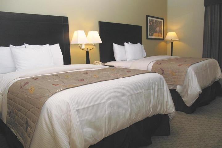 Pet Friendly La Quinta Inn & Suites Austin Cedar Park