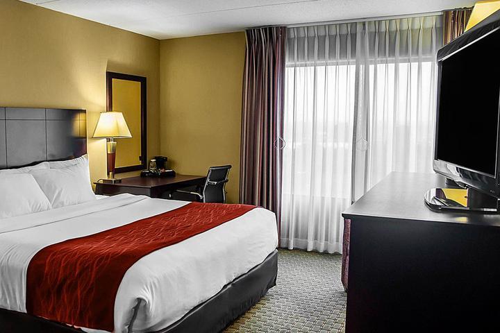 Pet Friendly Comfort Inn & Suites Watertown 1000 Islands