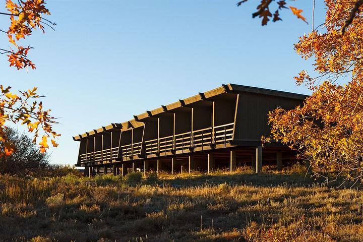 Pet Friendly Far View Lodge