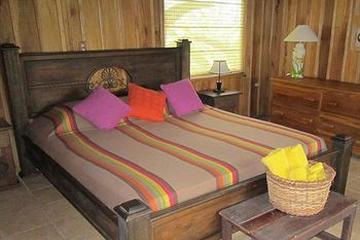 Pet Friendly Hotel Arenal Kokoro La Selva Resort